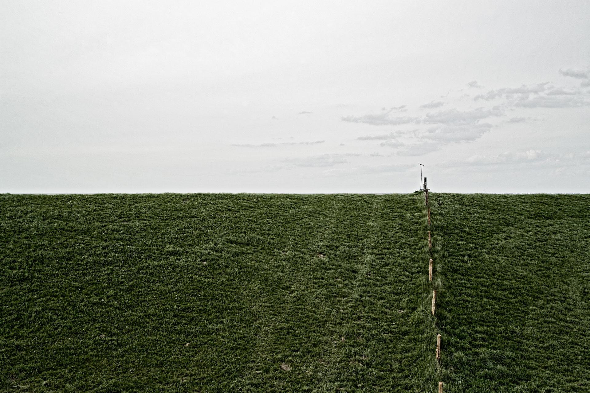 Deich der Elbe mit Fahrspur im Grass